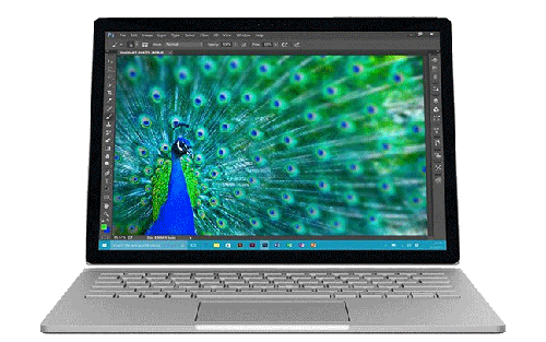 Surface Book for Rent